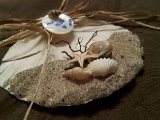 Deniz Kabuğu Nikah Şekeri